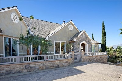 Temecula Single Family Home For Sale: 23402 La Vella Road