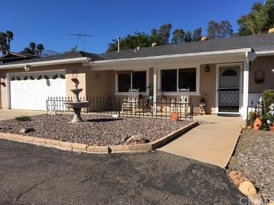 Fallbrook Single Family Home For Sale: 1130 Adobe Norte Avenue
