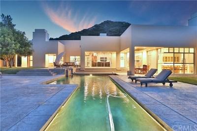 Murrieta Single Family Home For Sale: 22129 Serenade Ridge Drive