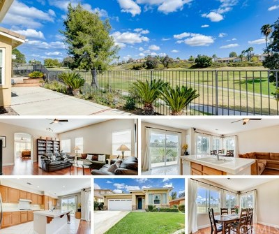 Temecula Single Family Home For Sale: 31165 Gleneagles Drive