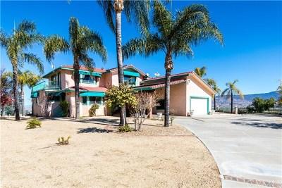 Hemet Single Family Home For Sale: 27822 Vista Moree Court