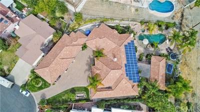 Canyon Lake Single Family Home For Sale: 22928 San Joaquin Dr E