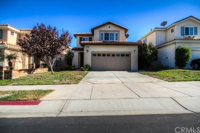 Lake Elsinore Single Family Home For Sale: 32574 Wildflower Drive