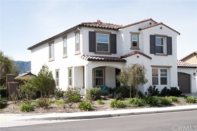 Lake Elsinore Single Family Home For Sale: 29323 Home Plate