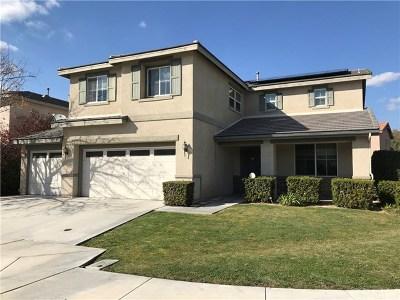 San Jacinto Single Family Home For Sale: 1567 Burns Lane