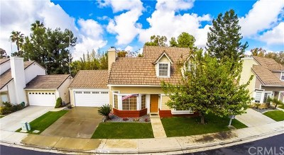 Mission Viejo Single Family Home For Sale: 21791 Tegley
