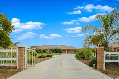 Perris Single Family Home For Sale: 17596 Baluchi Court