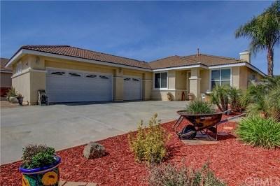 Wildomar Single Family Home For Sale: 24900 Butterchurn Road