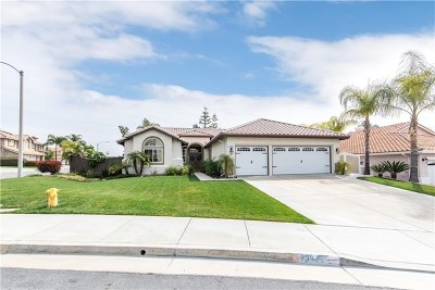 Murrieta Single Family Home For Sale: 23925 Via Segovia