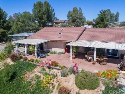 Temecula Single Family Home For Sale: 35310 Pauba Road