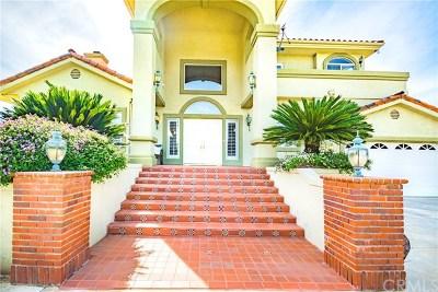 Temecula Single Family Home For Sale: 45801 Sandia Creek Drive