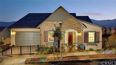 Corona Single Family Home For Sale: 24508 Crestley Drive