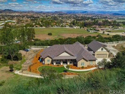 Murrieta Single Family Home For Sale: 42904 Ivy Street