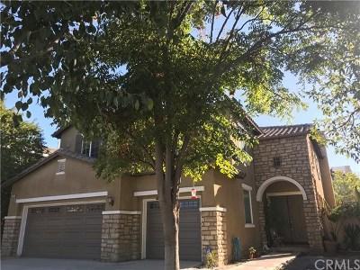 Lake Elsinore Single Family Home For Sale: 12 Via De La Valle