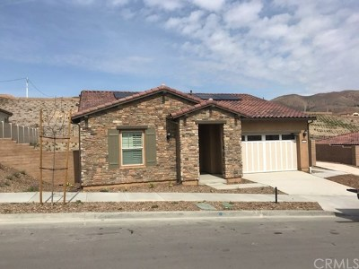 Corona Single Family Home For Sale: 24576 Overlook Drive