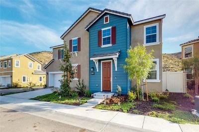 Lake Elsinore Single Family Home For Sale: 24069 Elderberry Lane