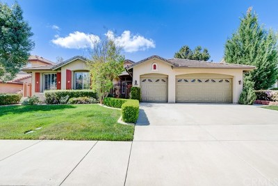 Temecula Single Family Home For Sale: 43849 Carentan Drive