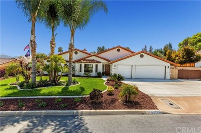 Temecula Single Family Home For Sale: 30329 Via Canada