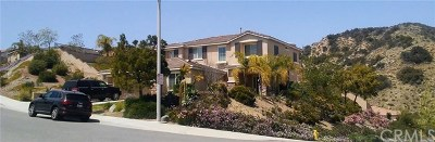 Lake Elsinore Single Family Home For Sale: 15488 Solstice Court