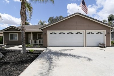 Canyon Lake Single Family Home For Sale: 30135 Little Harbor Drive