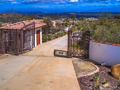 Murrieta CA Single Family Home For Sale: $1,250,000
