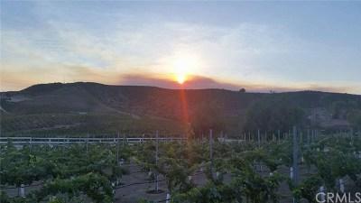 Temecula Single Family Home For Sale: 41740 Camino Del Vino
