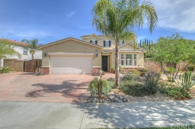 Lake Elsinore Single Family Home For Sale: 34160 Camelina Street