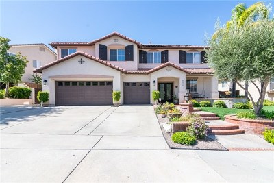 Temecula Single Family Home For Sale: 33355 Fox Road