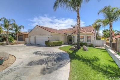Canyon Lake Single Family Home For Sale: 23201 Canyon Lake Dr. South Drive S
