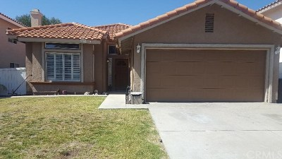 Temecula Single Family Home For Sale: 30002 Jon Christian Place