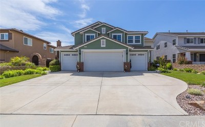 Murrieta Single Family Home For Sale: 23491 Karen Place