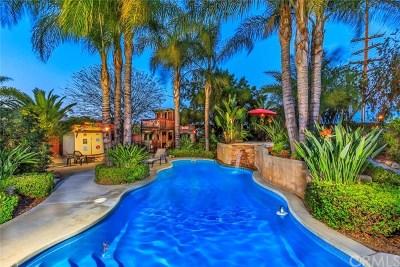 Murrieta Single Family Home For Sale: 41646 Grand View Drive