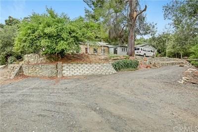 Temecula Single Family Home For Sale: 47521 E Pala Road N