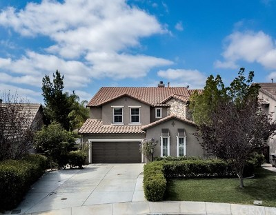 Murrieta Single Family Home For Sale: 27135 Coral Bells Way
