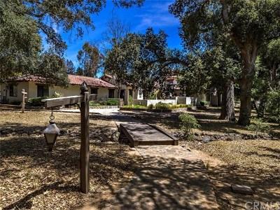 Murrieta Single Family Home For Sale: 20575 Avenida De Arboles