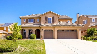 Murrieta Single Family Home For Sale: 29552 Andromeda Street