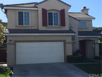 Murrieta Single Family Home For Sale: 38936 Burton Creek Lane