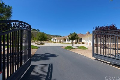 Murrieta Single Family Home For Sale: 21855 The Trails Circle