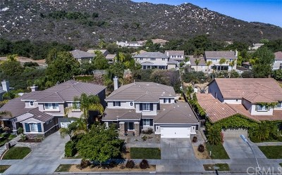 Murrieta Single Family Home For Sale: 38241 Placer Creek Street