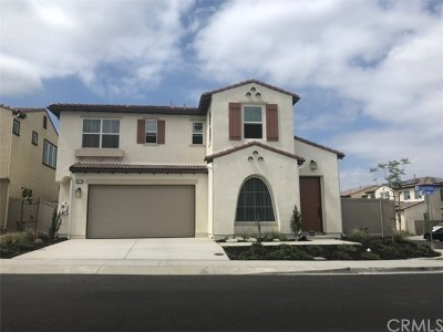 Lake Elsinore Single Family Home For Sale: 39779 Strada Firenze