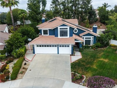 Murrieta Single Family Home For Sale: 40597 Erie Court