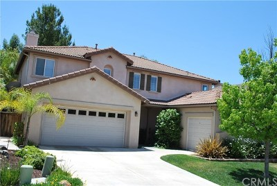 Murrieta Single Family Home For Sale: 29685 Glen Brook Way