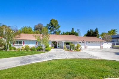 Temecula Single Family Home For Sale: 31494 Avenida Del Reposo