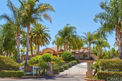Murrieta Single Family Home For Sale: 42201 Hawthorn Street