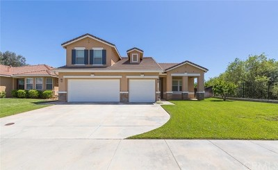 Wildomar Single Family Home For Sale: 35889 Country Park Drive