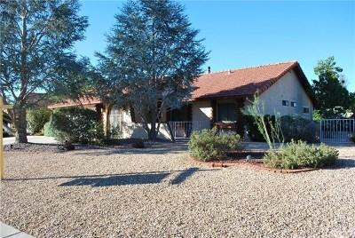 Hemet Single Family Home For Sale: 1323 Pepper Tree Drive