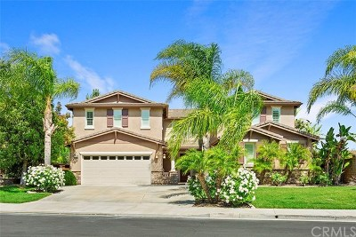 Temecula Single Family Home For Sale: 42443 Suva Lane