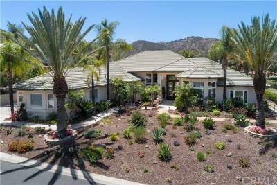 Murrieta Single Family Home For Sale: 38589 Hillside Trail Drive