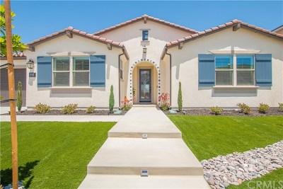 Menifee Single Family Home For Sale: 24212 Deputy Way