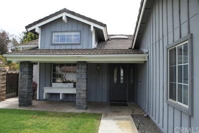 Temecula Single Family Home For Sale: 31241 Corte Alhambra